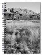 Winter Trees Landscape Spiral Notebook