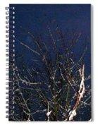 Winter Treetop Spiral Notebook
