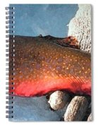 Winter Trout Spiral Notebook