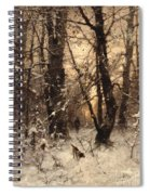 Winter Twilight Spiral Notebook