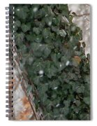 Winter Vine Spiral Notebook