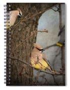 Winter Visitors Spiral Notebook