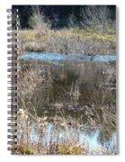 Winter Wetlands Of Alabama Spiral Notebook