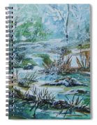 Winter Whispers On Catskill Creek Spiral Notebook