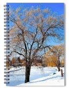 Winter Willow Spiral Notebook