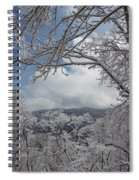 Winter Window Wonder Spiral Notebook