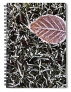 Winter With Frosted Leaf On Frozen Grass Spiral Notebook