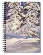 Winter Wonder Spiral Notebook