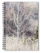 Winter Woodland With Subdued Colors Spiral Notebook