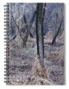 Winter Woods In Missouri 1 Spiral Notebook