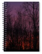 Winter Woods Sunset Spiral Notebook
