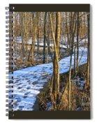 Winter Woods Walk Spiral Notebook