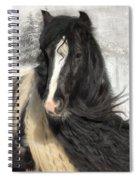 Winter Woolies Spiral Notebook