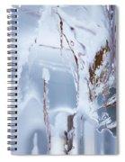 Winterland Spiral Notebook