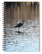 Winter's Blue Heron Spiral Notebook