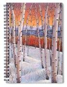 Winter's Dream Spiral Notebook