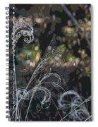 Winters Flourishes  Spiral Notebook