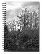 Winters Garden Spiral Notebook