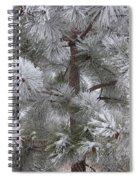 Winter's Gift Spiral Notebook