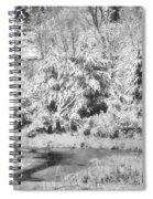 Winter's Grip Spiral Notebook