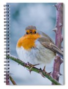 Winters Here Spiral Notebook