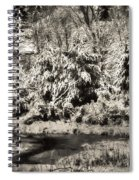 Winter's Sepia Grip Spiral Notebook