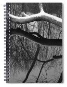 Winter's Touch Spiral Notebook