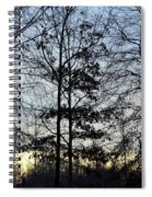 Winter's Trees At Dusk Spiral Notebook