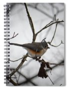Winter's Tufted Titmouse Spiral Notebook