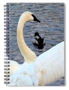 Winter's White Swan Spiral Notebook