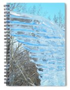 Winter's Wings Spiral Notebook