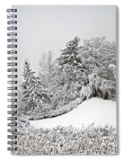 Wintery Fun Spiral Notebook