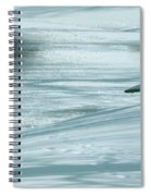 Wintry Riverside Spiral Notebook