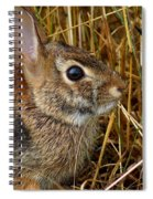 Wired For Action Spiral Notebook