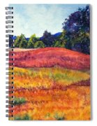 Wisconsin Summer Spiral Notebook