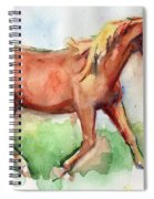 Horse Painted In Watercolor Wisdom Spiral Notebook