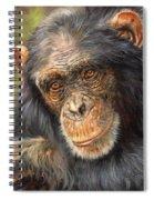 Wise Eyes Spiral Notebook