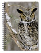 Wise Old Great Horned Owl Spiral Notebook