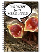 Wish You Were Here Greeting Card Spiral Notebook