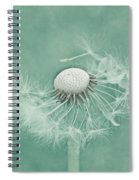 Wishful Spiral Notebook