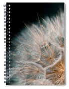 Wishing For Tomorrow Spiral Notebook