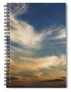 Wisp Spiral Notebook