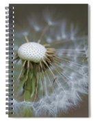 Wispy Dandelion Fluff Spiral Notebook