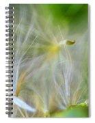 Wispy Journey Spiral Notebook