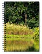 Wispy Wild Grass Reflections Spiral Notebook