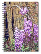 Wisteria And Old Fence Spiral Notebook