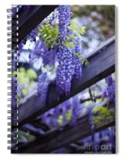 Wisteria Beams Spiral Notebook