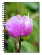 Wistfully Pink Spiral Notebook