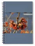 Witch Hazel Diane Spiral Notebook