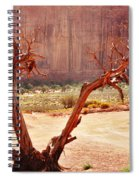 Witch Way Did They Go? Spiral Notebook